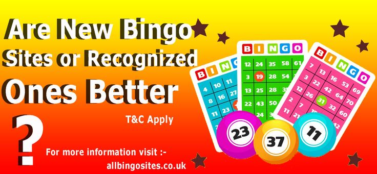 There are hundreds of different bingo sites out there, with new ones joining the ranks every time. With so many new bingo sites, it can be complicated to find out if you should play on a new bingo site with a lot of new features or a more recognized one with a character.