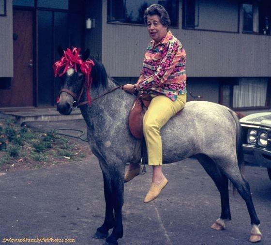 suburban cowgirl