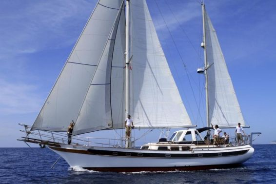 Repaso del año  Alquiler del barco en Ibiza