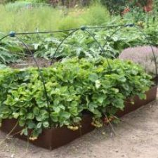 Garden Edging With Flexible Galvanized Steel Edging Products. Separate  Vegetable Gardens With Ease.