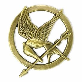 My latest obsession, just finished The Hunger Games, moving onto Catching Fire.