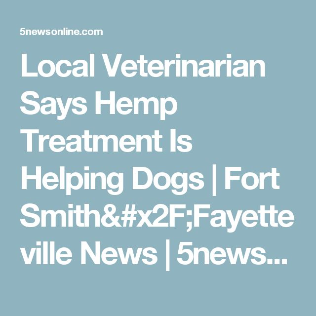 Local Veterinarian Says Hemp Treatment Is Helping Dogs | Fort Smith/Fayetteville News | 5newsonline KFSM 5NEWS