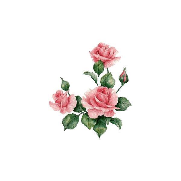 Gifs de Flores - Gifs Flowers- - CANTINHO ENCANTADO ❤ liked on Polyvore