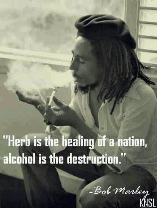 Herb is the healing of a nation, alcohol is the destruction. - www.CannabisTutorials.com