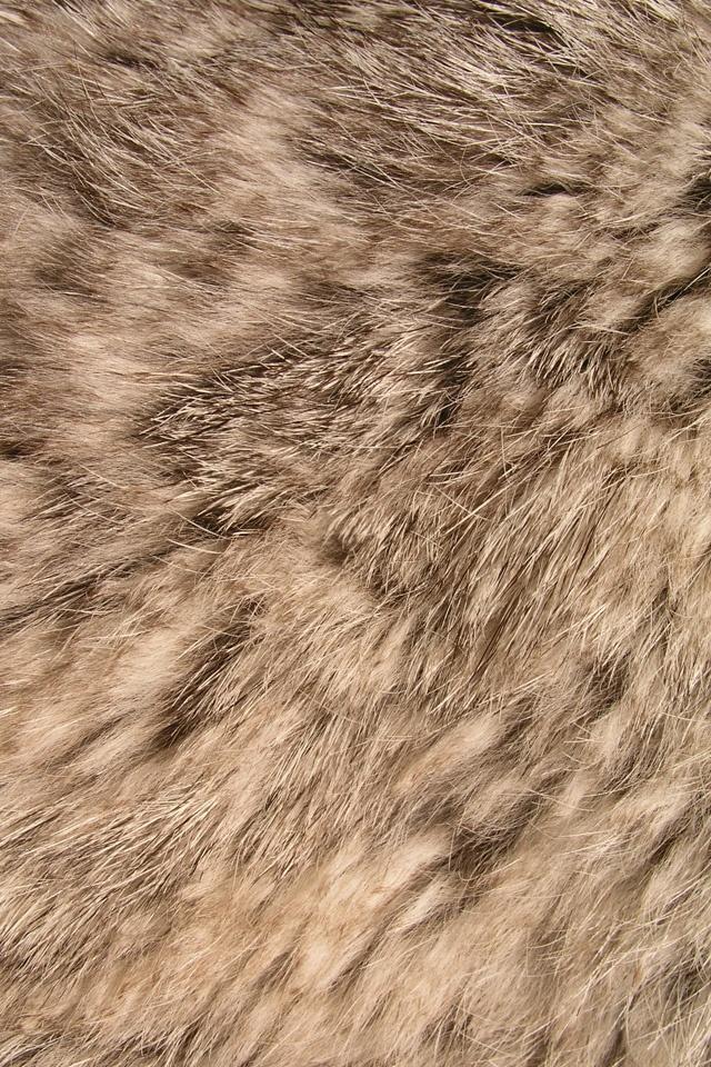 Animal Fur iPhone wallpaper