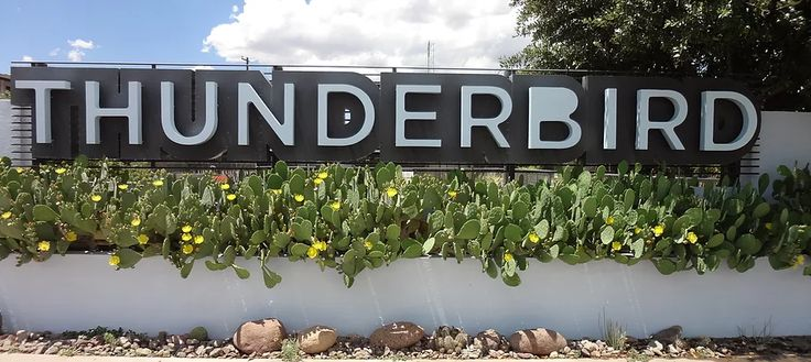 Thunderbird Hotel Marfa : Amenities