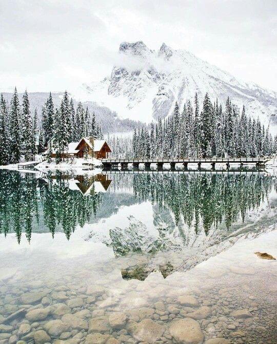 Winter in Emerald Lake, Yoho National Park - Canada.  Picture by @StevinT