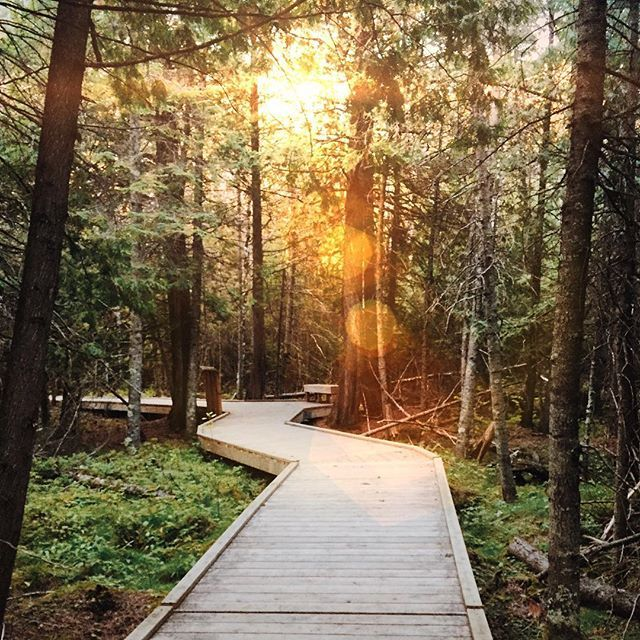 13 Most Incredible Hikes In Manitoba You Have To Do Once In Your Life - Narcity