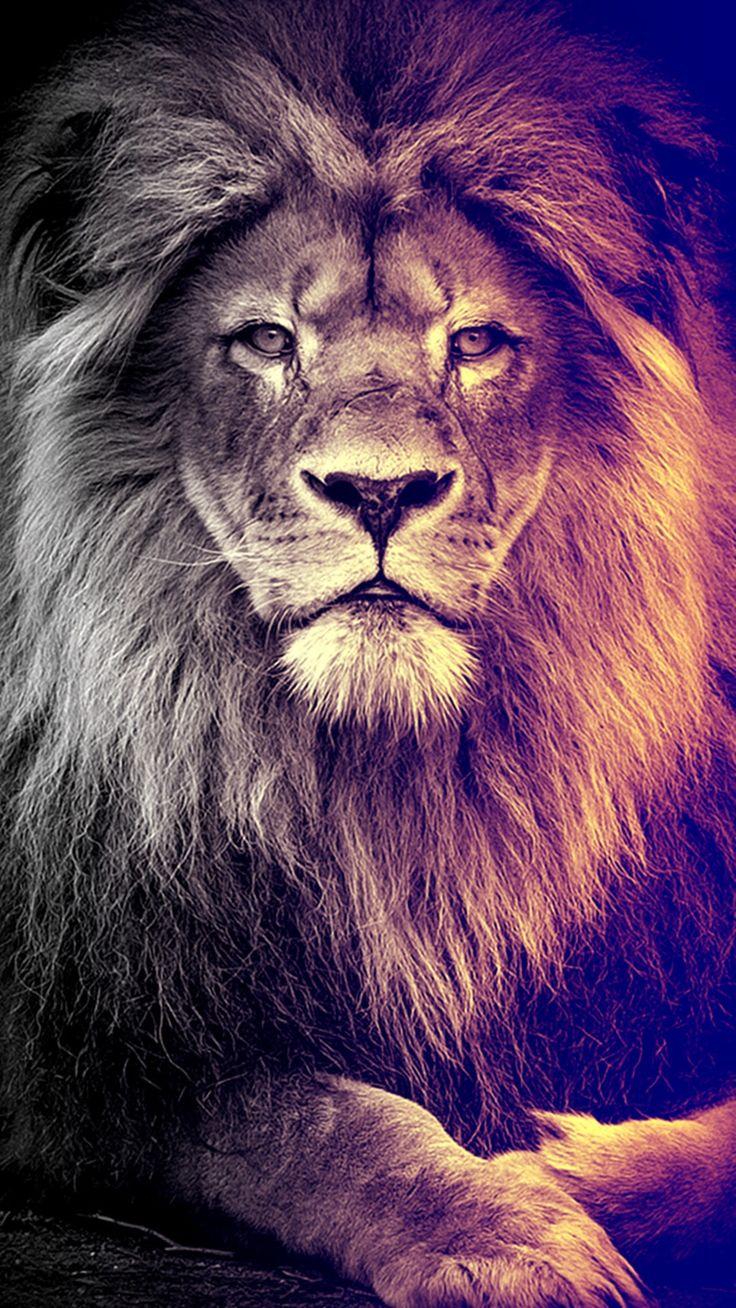 Heart Of A Lion Kid Cudi Tattoo