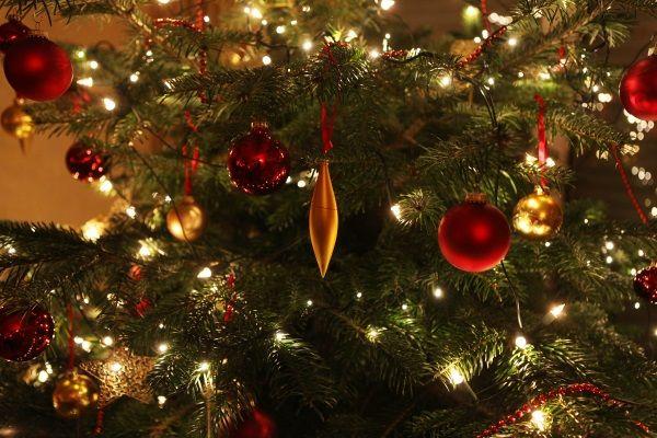 Weihnachtsbäume gehören zu jedem Weihnachtsfest dazu - nach Gustav Falke träumt sogar jeder Baum davon, geschmückt bei einer Familie zu stehen und zu leuchten.