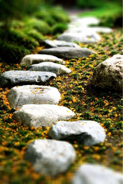 17 best images about stepping stones ideas inspiration for Stone stepping stones for garden paths