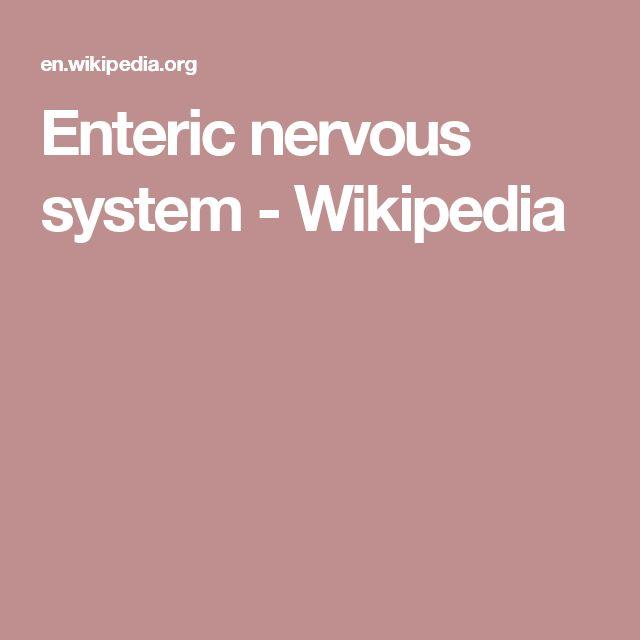 Enteric nervous system - Wikipedia