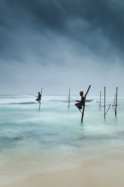 """""""Stilt fishing"""" is this technique of fishing the city of Galle in the southwest of Sri Lanka."""