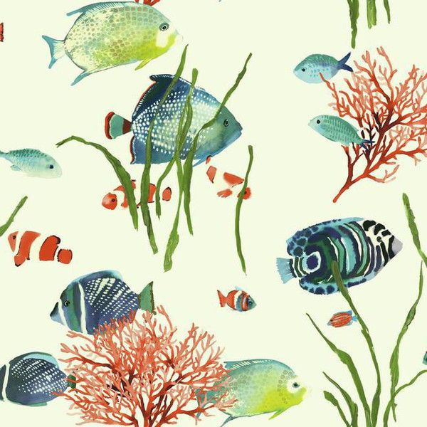 Tropical Reef Wallpaper in Multi design by York Wallcoverings ($40) ❤ liked on Polyvore featuring home, home decor, wallpaper, backgrounds, wallpaper samples, fish home decor, ocean wallpaper, coral home decor, sea home decor and fish wallpaper