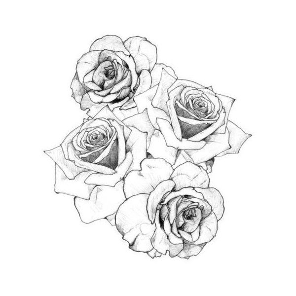Illustration Art Hipster Inked Roses Hippy Rose Tattoo Pencil Sketch