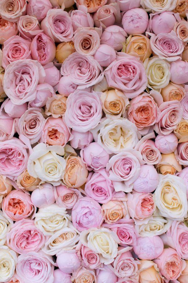 1401 best Beautiful Flower Arrangements images on Pinterest ...