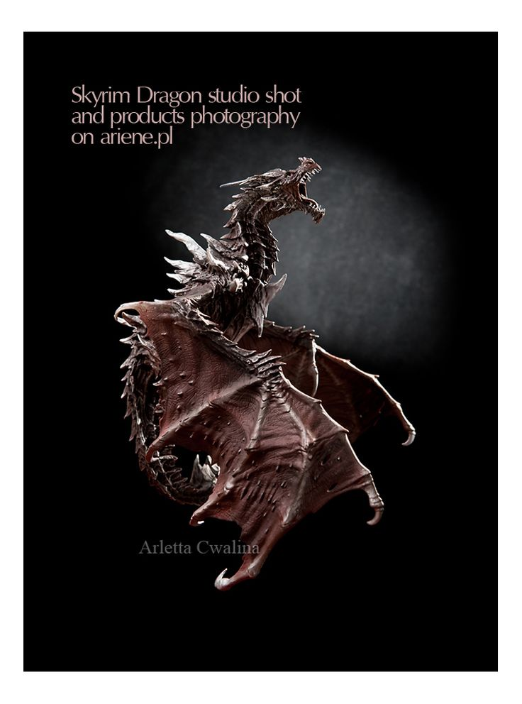 I'm proud of this photo, the way light is used to expose most value of the Alduin dragon from Skyrim game, collectors edition figure, fantasy. Toy on black background, in studio shot, photography by Arletta Cwalina. Use the link to go to full portfolio of things.