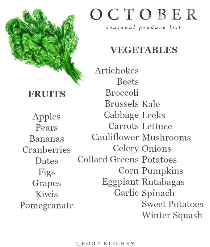 Today, I'm sharing my October Seasonal Produce List! Every month this year, I am sharing a seasonal produce list so that you all can have a handy dandy printable to save on your phones, or reference when making a grocery list. In addition, my website is organized so that you can look at my Ingredient Index for a specific ingredient, and findRead More »