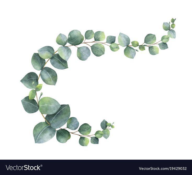 Aquarellvektorkranz Mit Grunen Eukalyptusblattern Und
