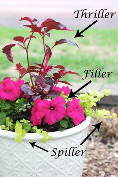 how to arrange pots according to thriller spiller filler technique