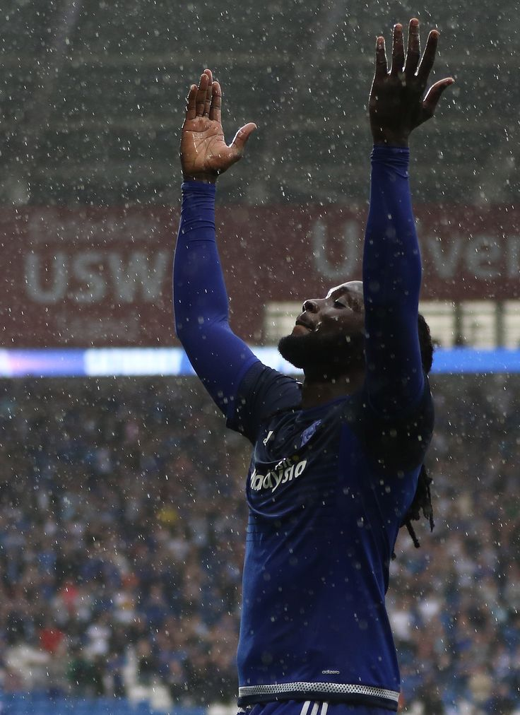 Kenwyne Jones takes the adulation of the Cardiff City fans after scoring against Wolves