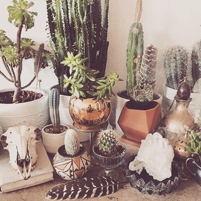 The collection  via @bohemiancollective