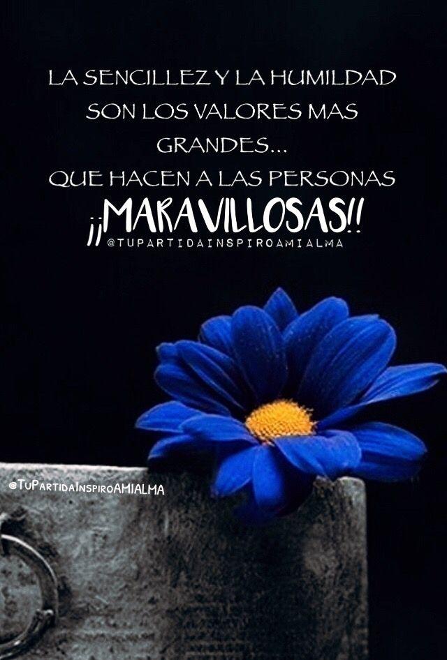 La Sencillez Y La Humildad Son Los Valores Mas Grandes Que Hacen A Las Personas Maravillosas Frases De Primas Sencillez Y Humildad Mujica Frases