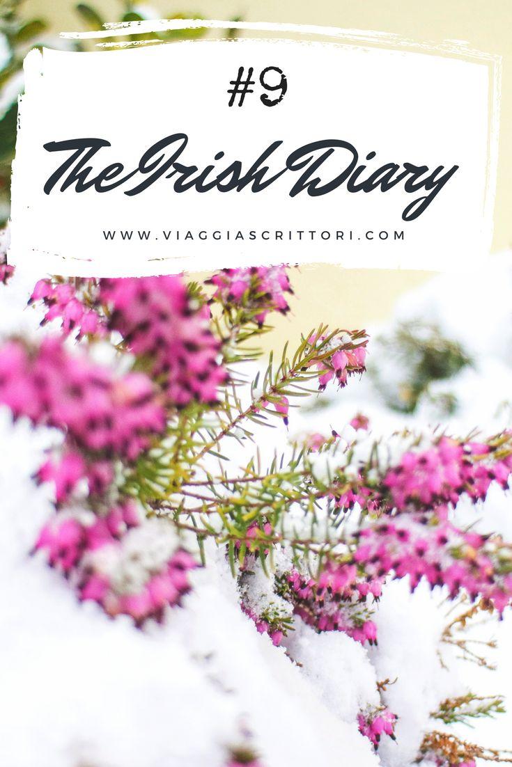Caro diario, ho tante cose da raccontarti. Febbraio è stato un mese di alti e bassi, piuttosto capriccioso. La primavera che aspettavo dev'essersi nascosta sotto il tappeto, mentre una grande bufera di neve copriva l'#Irlanda e la nostra casetta… #diary #diario #viaggi #travel #blog #dublino #dublin