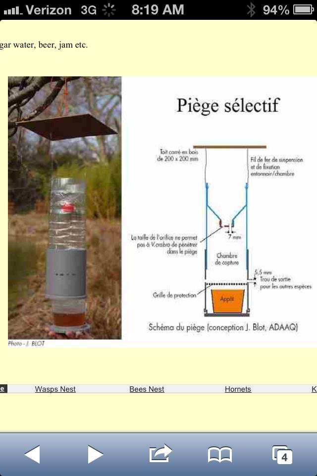 17 meilleures id es propos de piege frelon asiatique sur pinterest piege frelons asiatique - Piege a frelon maison ...