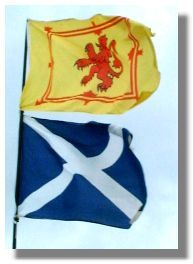 There are two flags associated with Scotland. The national flag is the white St Andrew's cross (the saltire) on a blue background. Technically, the lion rampant is the flag of the sovereign - but these days it is used by anyone.