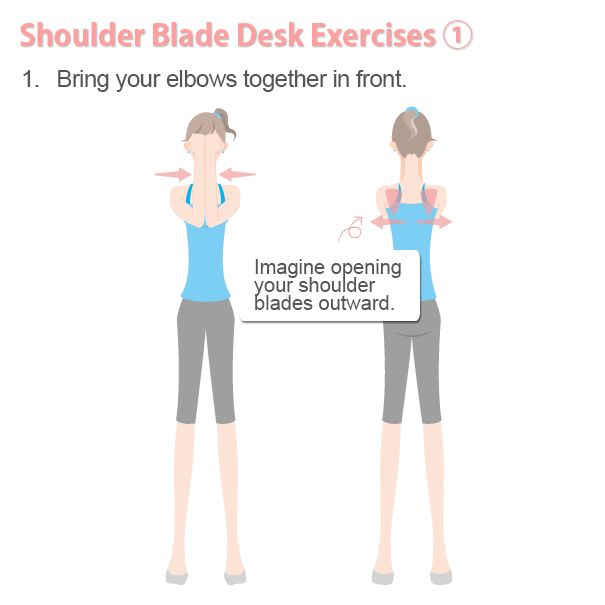 Shoulder-Blade Exercises to Burn Fat Fast A Healthy Way ...