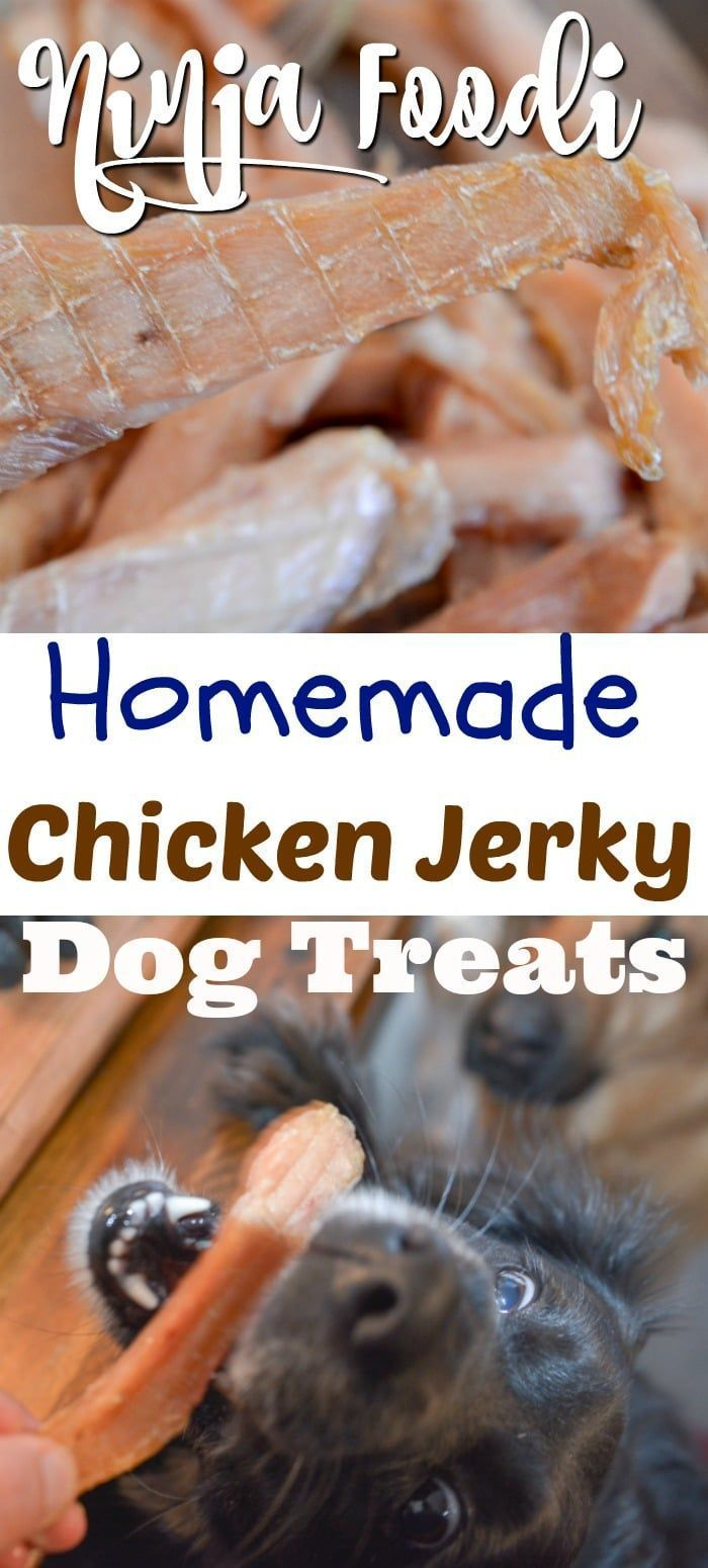 Ninja Foodi Chicken Jerky Treats For Dogs Recipe Dog Biscuit
