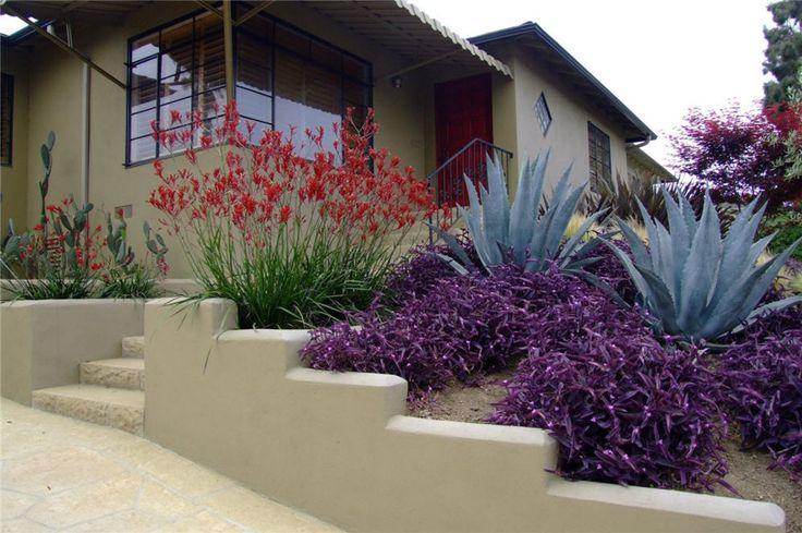 Colors On The Hillside Garden Landscaping Dry Garden