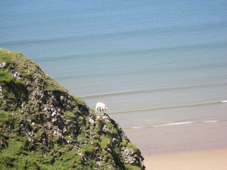 I love the Gower!