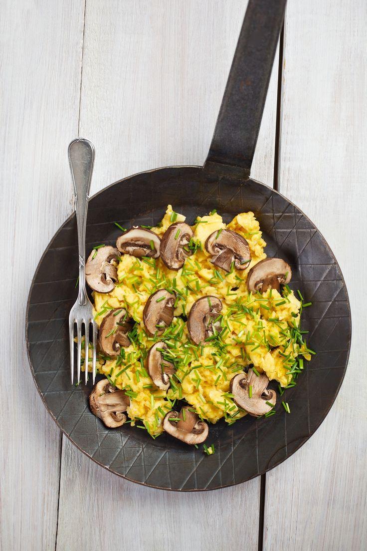 Houbová smaženice - U nás je houbaření oblíbené, většina houbařů si na svých úlovcích i ráda pochutná. Smaženice je populární a jednoduchý houbový pokrm. Vyzkoušejte jej i z naší Žampionové omelety.