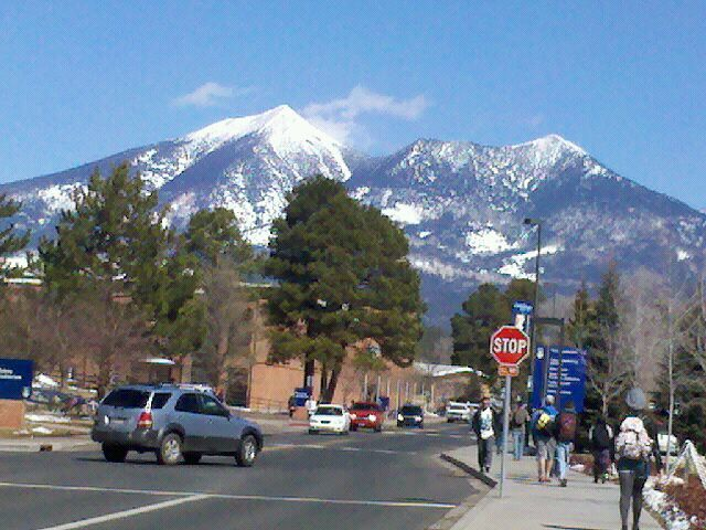 Northern Arizona University in Flagstaff, AZ