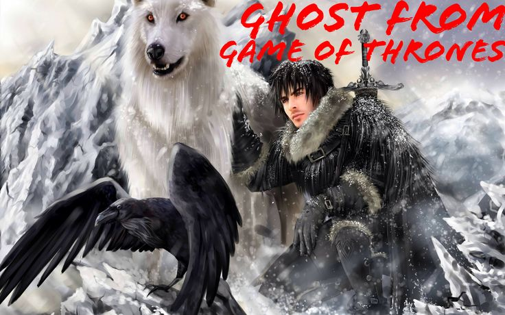 Ghost from the Game of Thrones