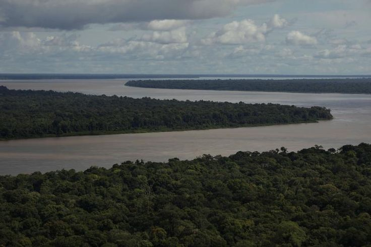 Aerial view of the Amazon River in Brazil. #deforestation  © Karla Gachet / Panos / Greenpeace