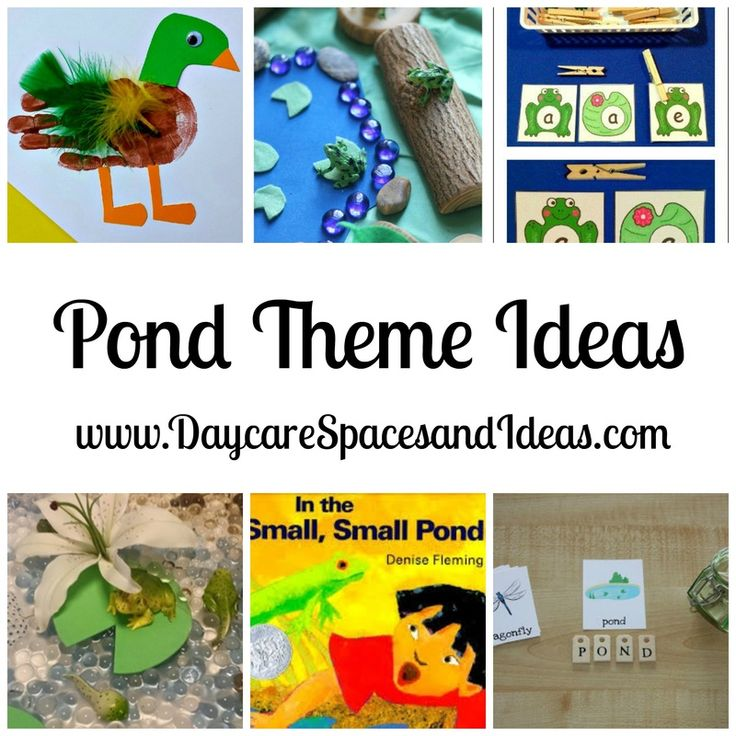 Ideas for creating a Pond Themed week in your Childcare Setting, Daycare, or Preschool.