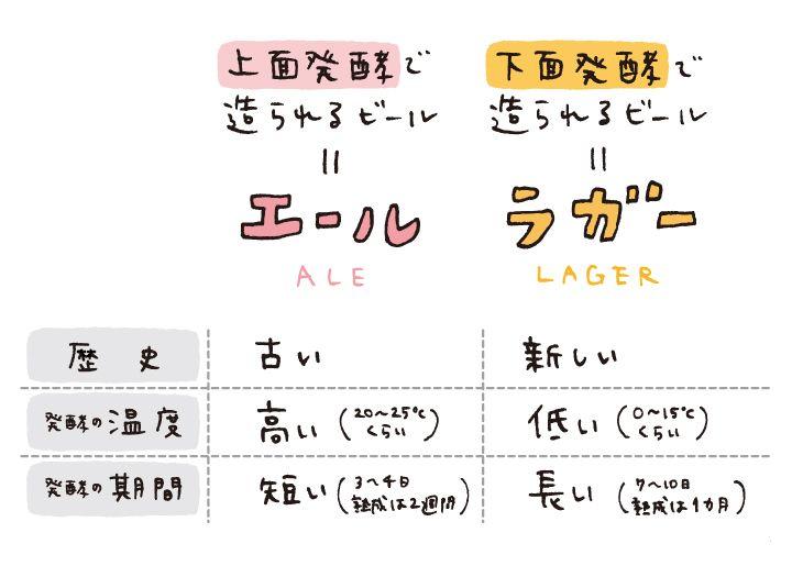 ビールの造り方の工程のひとつである「発酵」の種類、そして「エール」と「ラガー」についてのお話です。