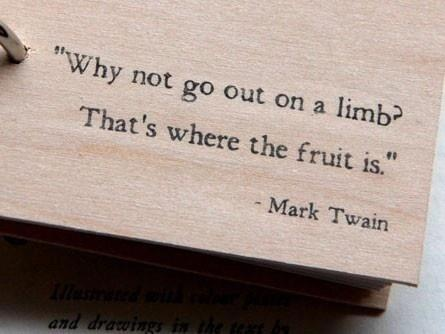 Why not go out on a limb?  That's where the fruit is. Mark Twain