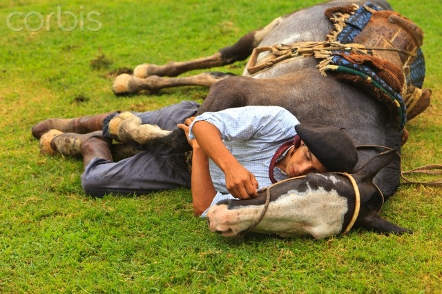 """Gaucho sleeping with horse on grass"" Dice: ""Gaucho durmieno con su caballo en el pasto""  Que divinos..."