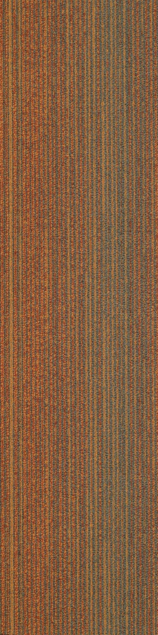 65 best carpet tile images on pinterest shaw contract view the commercial carpet style saturate tile from shaw contract view the carpet in a room scene order samples see specifications and more baanklon Choice Image