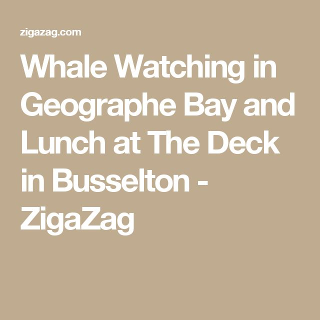 Whale Watching in Geographe Bay and Lunch at The Deck in Busselton - ZigaZag