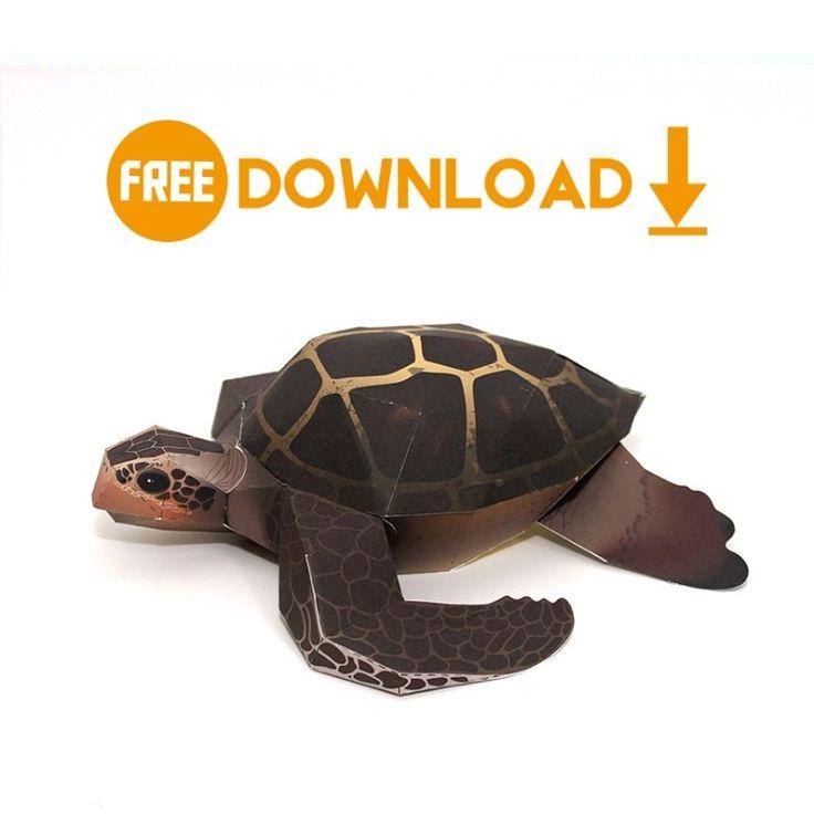 무료도면다운로드/종이모형/바다거북 : 네이버 블로그