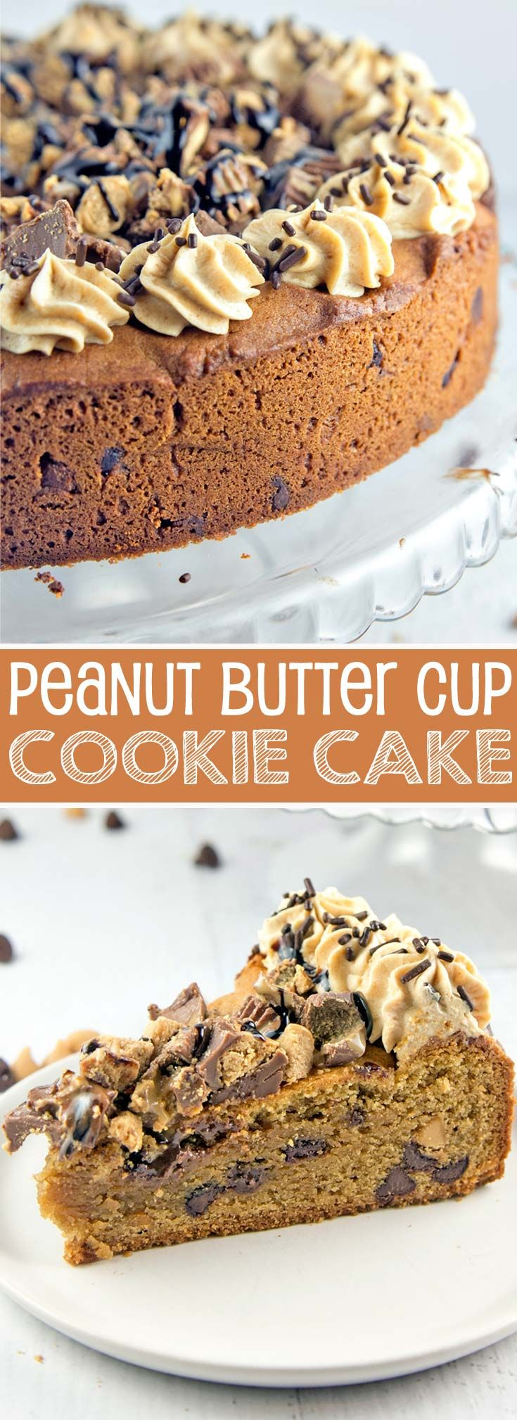 Peanut Butter Cup Cookie Cake: a peanut butter chocolate chip cookie cake, topped with whipped peanut butter ganache, chopped peanut butter cups, and chocolate and peanut butter sauces. {Bunsen Burner Bakery} via @bnsnbrnrbakery