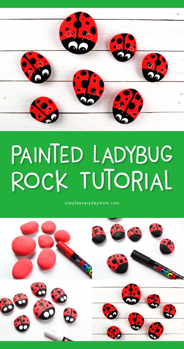 These Ladybug Painted Rocks Are Fun Easy For Kids Ladybug