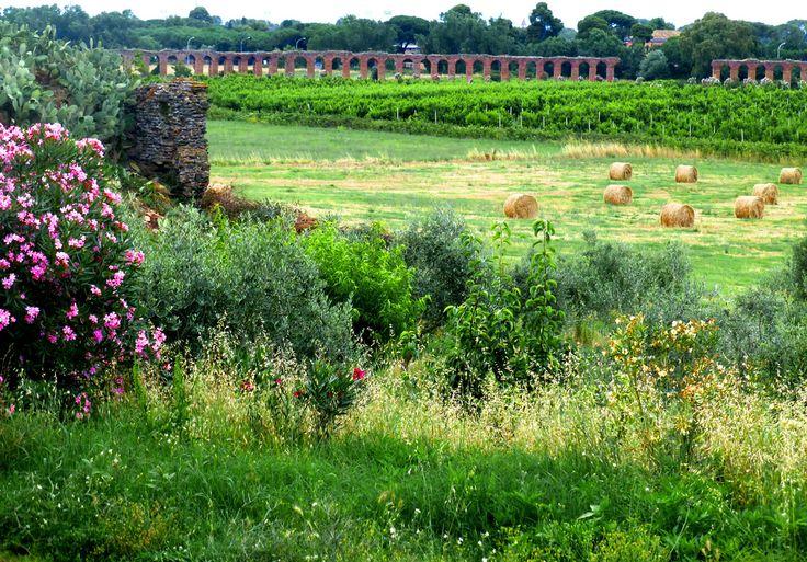 Roman Acqueducts