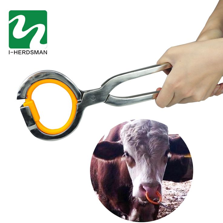 Cow Farm Animals tool Cattle traction ring plastic nose pliers Horse Ass traction Tool Farm Equipment  #Affiliate