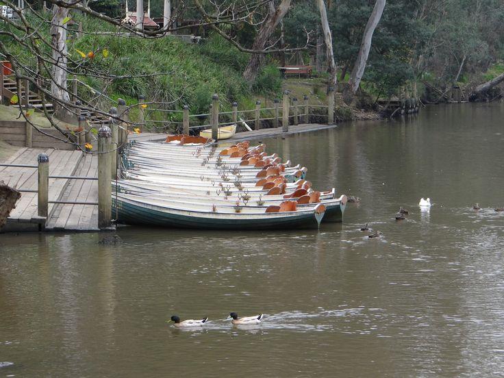 Fairfield Boathouse - Melbourne - sept 2014